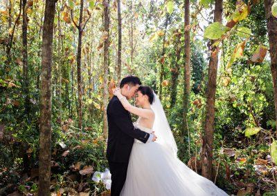 Honeymoon photos-4